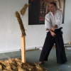 Ekskurzija št. 3: iaido in tameshigiri