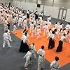 Mednarodni mladinski aikido seminar